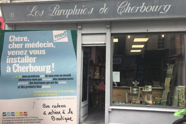 Les-parapluies-de-Cherbourg